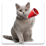 Cat Sounds ratings and reviews, features, comparisons, and app alternatives