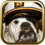 Free Bulldog Puzzle Games ratings and reviews, features, comparisons, and app alternatives
